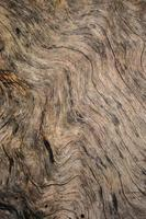 Fondo de madera grunge