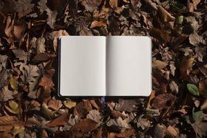 hojas de otoño y cuaderno vacío