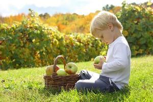 criança brincando com maçãs no pomar