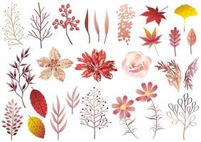 Set of Red Botanical Elements