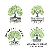 Root Of The Tree Logo Design Inspiration