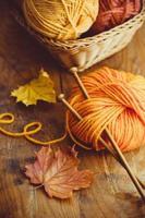 Autumn Knitting photo