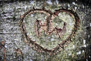 wooden heart photo