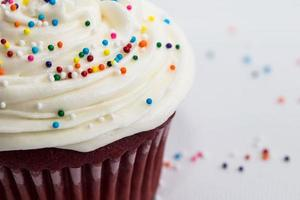 Sprinkle Cupcake Close Up