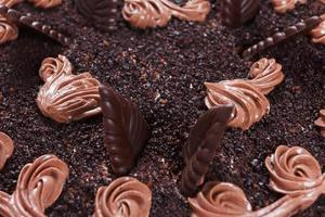 Chocolate cake close-up