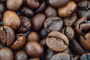 still life of coffee photo