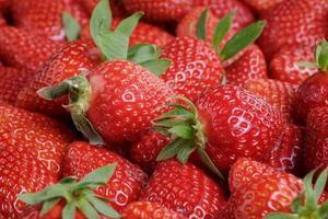 fresh strawberries close up photo