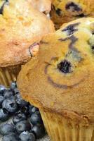 Muffins close-up photo
