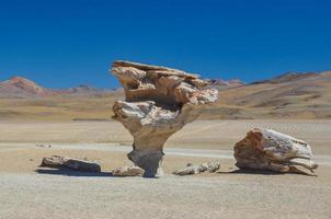 piedra del arbol, sur lipez, bolivia sur foto