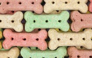 Rows of dog biscuits photo