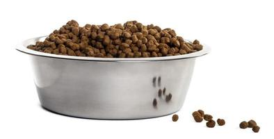 Dog bowl with croquettes full to the brim, isolated