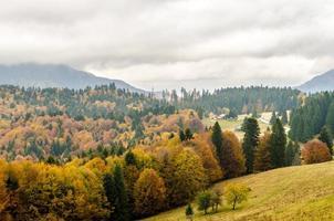 Autumn mountain landscape background. photo