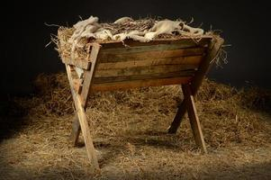 Manger with Crown of Thorns photo