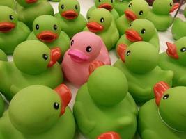 un pato rosa foto