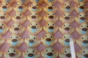 Rubber Duckies photo