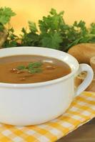 fresh duck soup and parsley photo