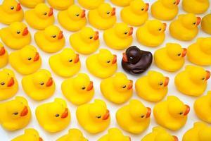 patos de goma amarilla foto