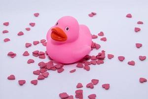 pato de goma rosa en corazones de San Valentín foto