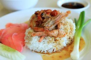 pato asado sobre arroz foto
