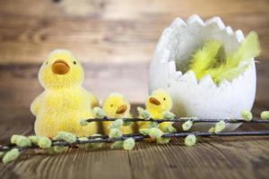Ducks Easter, Easter eggs, based photo