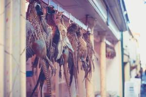 Pheasants hanging outside butcher's shop photo