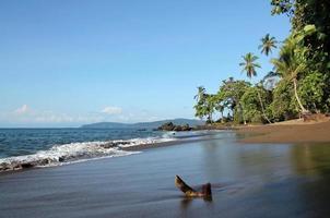 Bahía Drake foto