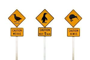 Collage of New Zealand penguin, weka and kiwis road sign
