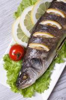 sea bass with lemon, lettuce and tomatoes vertical. top view
