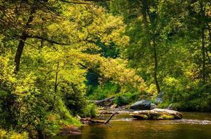 hermosa escena del arroyo a lo largo de la pólvora cae en el condado de baltimore