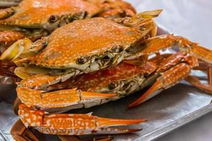 Hot steamed flower crab or blue crab.