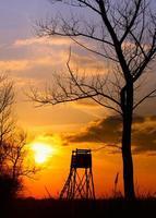 puesta de sol en el gorve foto