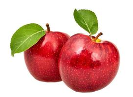 Two red apples with leaves photo