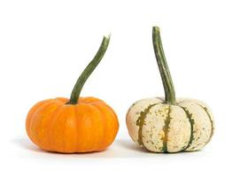 Two Gourds Isolated on White