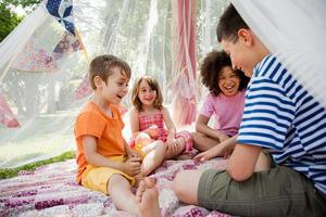 Four friends in summer netting tent photo