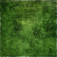 Abstract deep green grunge background