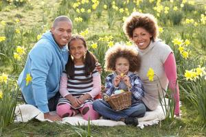 Family of four posing for portrait among field of daffodils