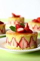 French strawberry cake photo