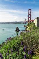 Golden Gate Bridge in San Francisco with purple foreground flowers photo