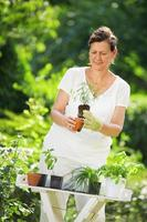mujer plantar hierbas en el jardín
