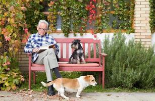 älterer Mann mit Buch und Hunden