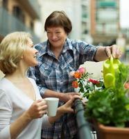 Two women drink tea on balcony