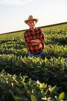 älterer Landwirt in einem Feld, das Ernte untersucht