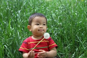 Infant blowing dandelion seeds photo