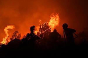 bombeiros e incêndio florestal / bomberos e incendios forestales foto