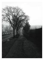 Sombra del trabajo photo