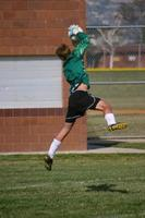 Goalie Leaping Catch