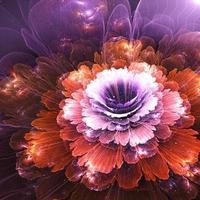 flor abstracta, gráfico generado por computadora foto