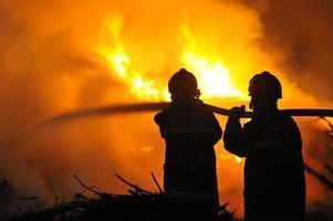 Forest Fire , Incêndio photo
