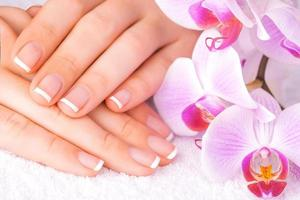 beautiful manicure with pink orchid on the white photo