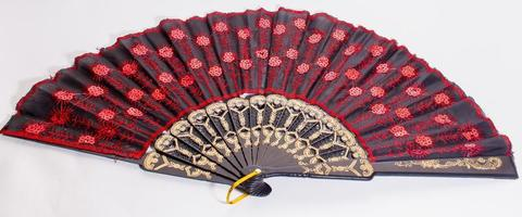 isolated hand fan